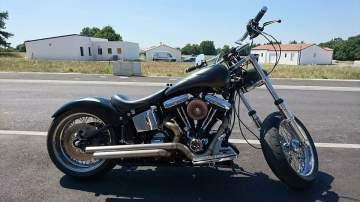 Harley flamme poudre caméléon mat & brillant