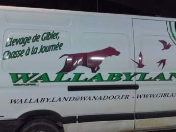 Wallabyland gibier et chasse