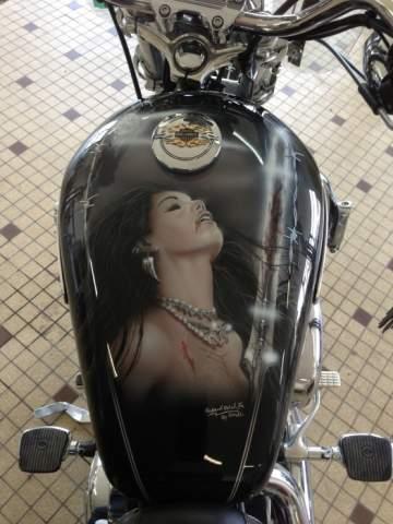 Harley Davidson 1200 sport low personnalisation aérographie 44 Nantes